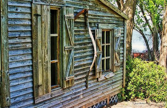 Old Log Cabin by Joan Bertucci