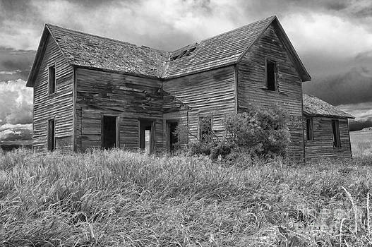 Sandra Bronstein - Old Montana Farmhouse