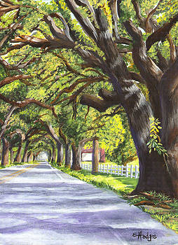 Old Oak Tree with Border by Elaine Hodges
