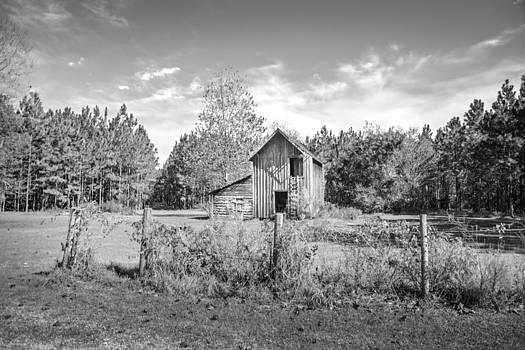Judy Hall-Folde - Old Outbuilding