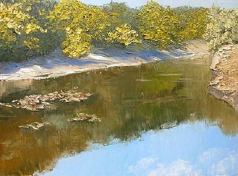 Old pond by Yaroslav Kuvshinov