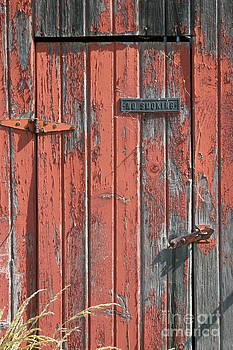 Old Red Barn Door by James Thomas