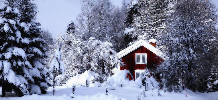 Old Rural Winter Landscape Scenery by Christian Lagereek