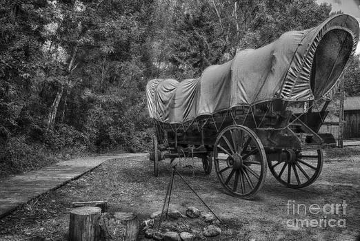 Darcy Michaelchuk - Old Scene-Camp