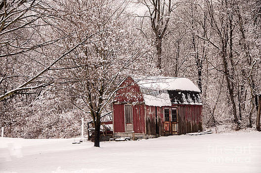 Old Shed in Snow by Jane Axman