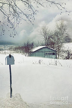 Sandra Cunningham - Old shed in winter snow storm