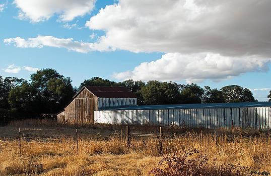Old Sheep Barn by Jennifer Muller
