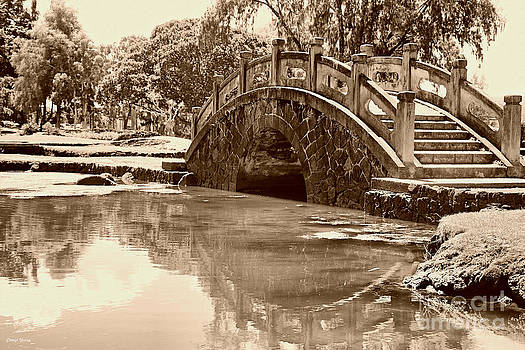 Cheryl Young - Old Stone Bridge