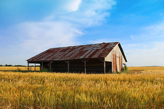 Old Town Living - Farm by Brooke Fuller