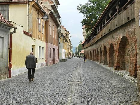 Ion vincent DAnu - Old Walls Old Man Walking