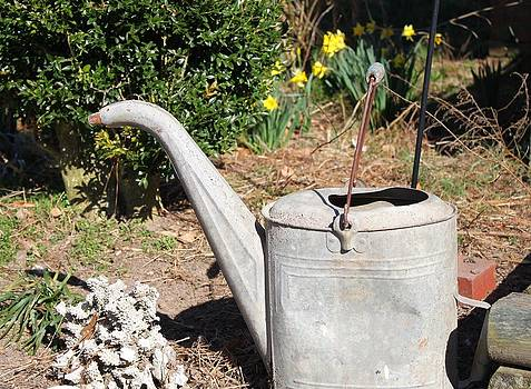 Old Watering Can by Carolyn Ricks