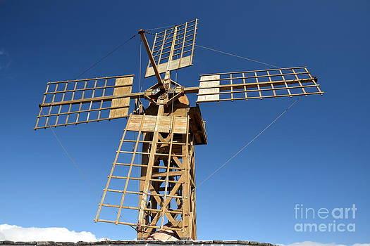 Joe Cashin - Old windmill