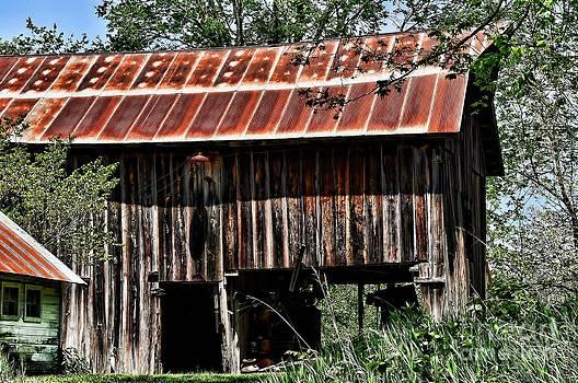 Liane Wright - Old Wooden Barn