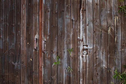 Old wooden gates by Anna Grigorjeva