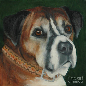 Older Boxer by Pet Whimsy  Portraits