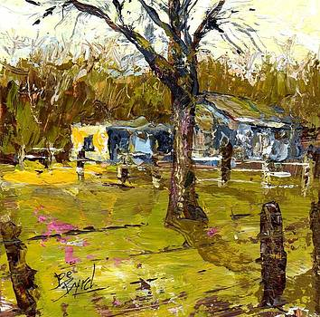 Ole Mule Barn by Joe Byrd