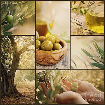 Mythja  Photography - Olives collage