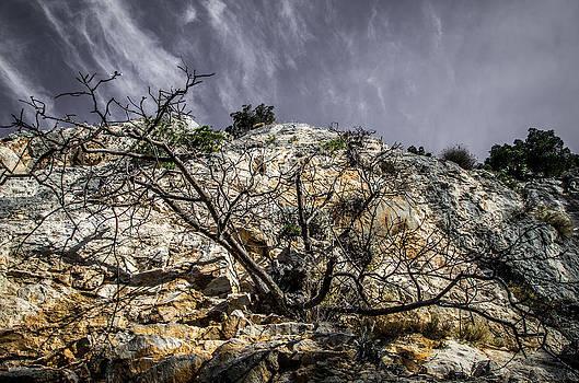 On A Cliff by Mislav Glibota