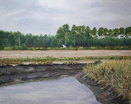 On A Tidal Creek by Stanton Allaben