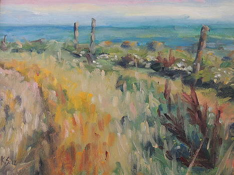 On The Coastal Path by Karen Scannell