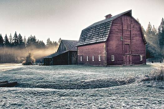 On The Farm by Scott Holmes