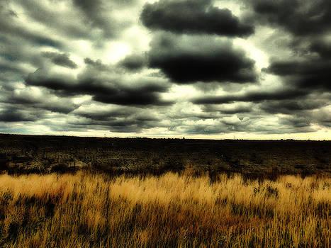 On The Prairie by Mick Logan