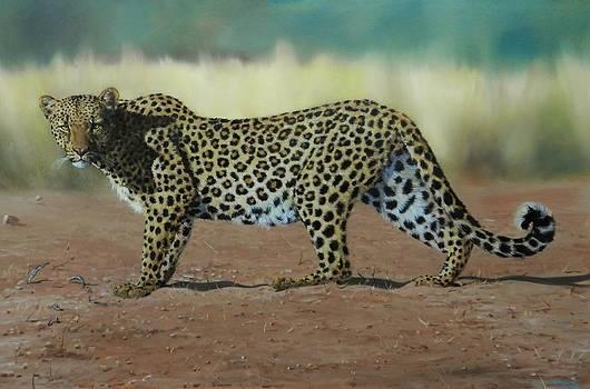 On The Prowl by Robert Teeling