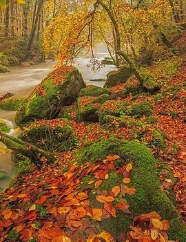 On the riverside by Maciej Markiewicz