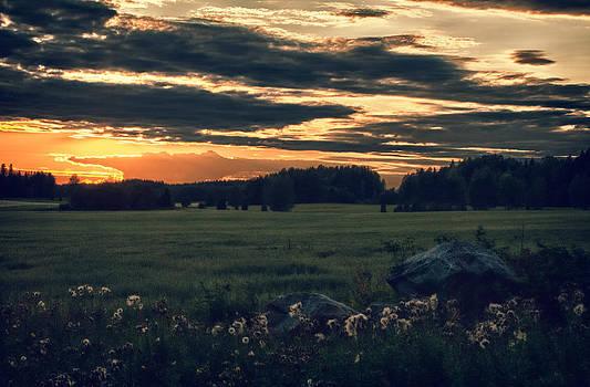 On The Rocks by Matti Ollikainen