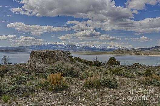 On the Shore of the Buffalo Bill reservoir by Steve Triplett
