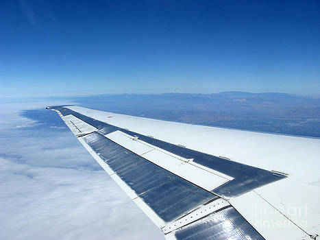 On the Wing by Ausra Huntington nee Paulauskaite