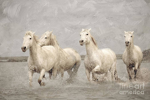 On White Horses Let Me Ride Away... by Lisa Cockrell
