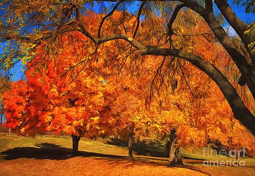 One Autumn Day by Billie-Jo Miller