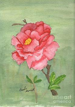 One Rose by Pamela  Meredith