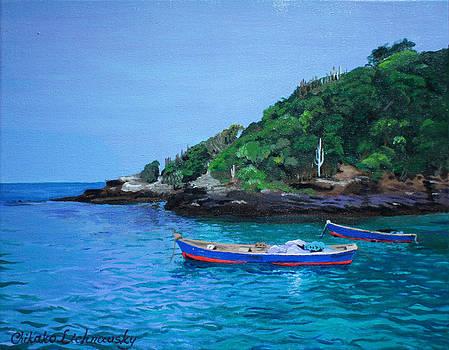 One scenery of Praia de Joao Fernandinho by Chikako Hashimoto Lichnowsky