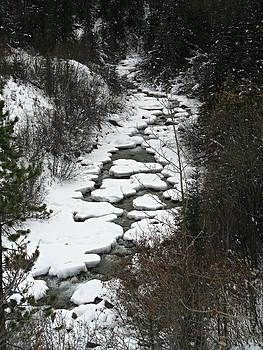 One Stony Creek by Shirley Sirois