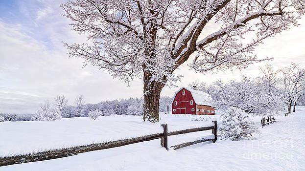 Edward Fielding - One Winter Morning on the Farm