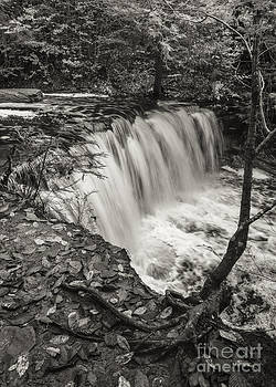 Oneida Falls by Aaron Campbell