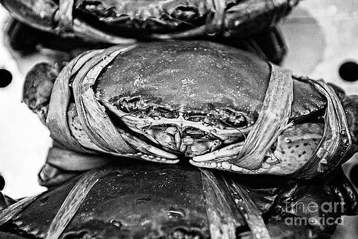 Dean Harte - Ooh Crab - Black and White Version