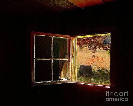 Julie Dant - Open Cabin Window II