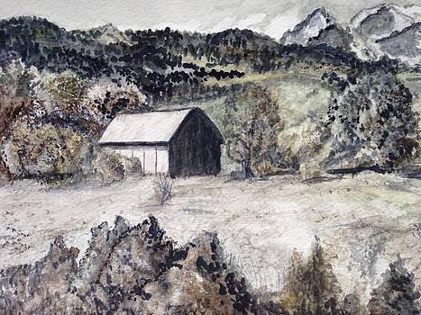 Open Spaces by Carol Warner