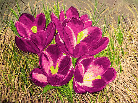 OPurple Crocus  flowers  by Maggie Ullmann