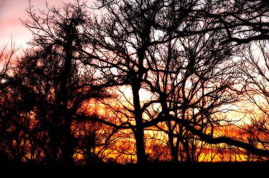 Orange and Pink Sky by Heather Bridenstine