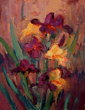 Orange and purple iris by R W Goetting