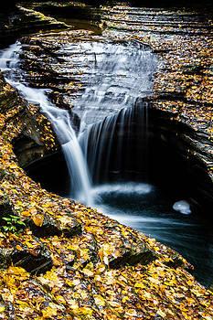 Orange Around the Falls by Kaye Seaboch