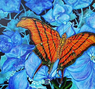 Orange Butterfly by Debbie Chamberlin