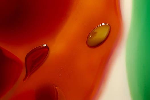 Omaste Witkowski - Orange Elegance