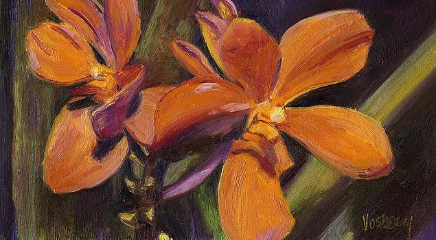 Stacy Vosberg - Orange Flowers