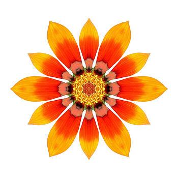 Orange Gazania I Flower Mandala White by David J Bookbinder