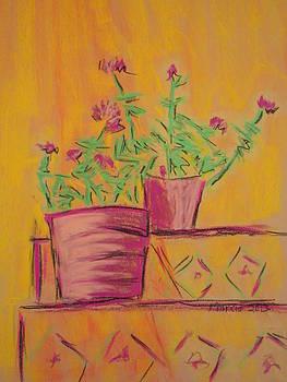 Orange Geraniums by Marcia Meade